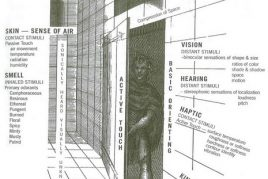 Sensing Depth through Vision and Touch in Architectural Space